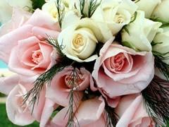 fleurs-gw01.jpg